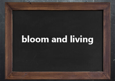 bloom and living